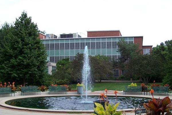 密歇根州立大学校景4